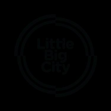LittleBigCity